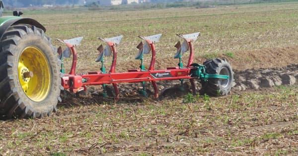 Lavorazione Del Mais.Mais Da Granella Con Tre Sistemi Di Lavorazione Del Terreno