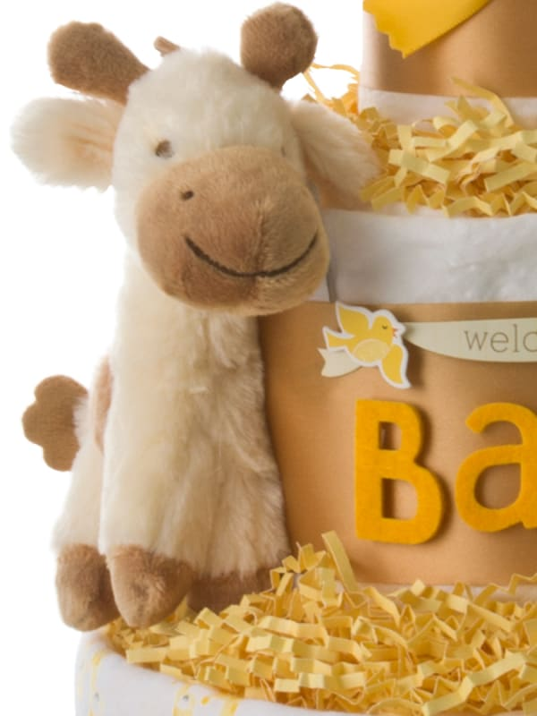 Lil Baby Cakes Welcome Baby Diaper Cake