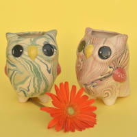 Owl - Swirly Pot Mini