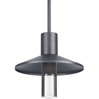 Ash 12 Outdoor Pendant Dome Charcoal 2700K 90 CRI 2700K Low Output