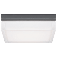 Boxie Large Outdoor Wall/Flush Mount Large Charcoal 3000K INC
