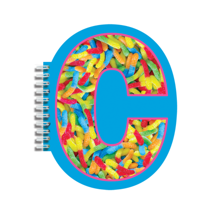 Picture of C Initial Notebook