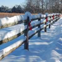winter time at BLACKBERRY CREEK RETREAT B&B - SPRINGFIELD MO