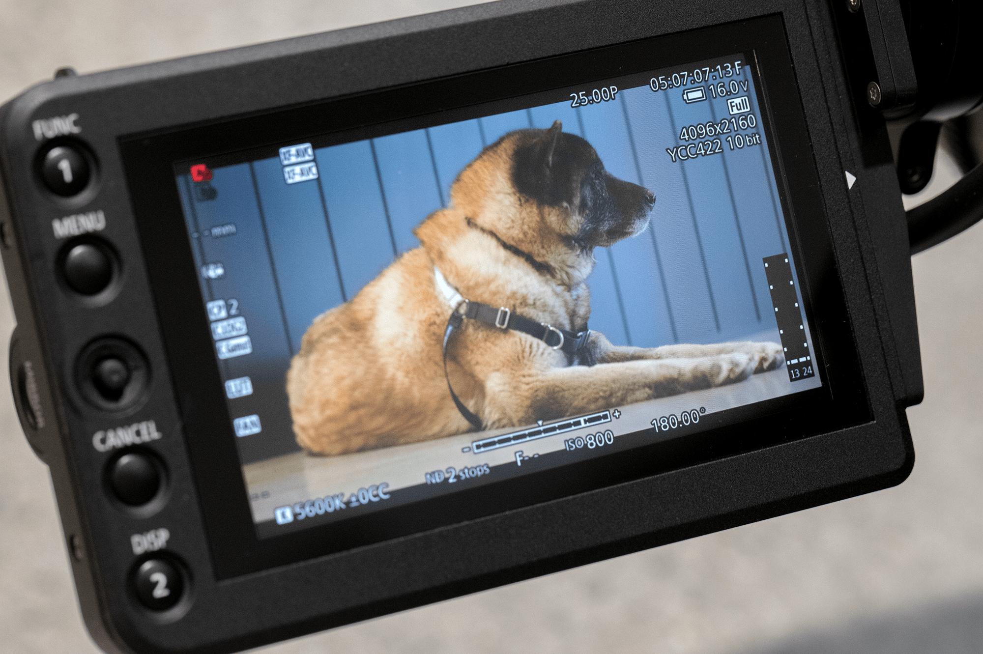 Canon C500 MKII Recording Resolutions