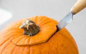 Herb Roasted Vegetables in Pumpkin
