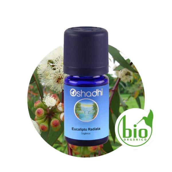 Eucalipto Radiata - Óleo Essencial Orgânico - 5ml