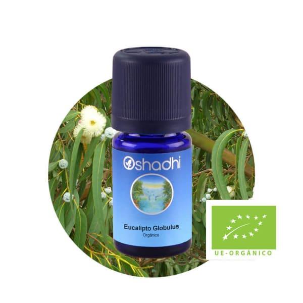 Eucalipto Globulus  - Óleo Essencial Orgânico - 5ml