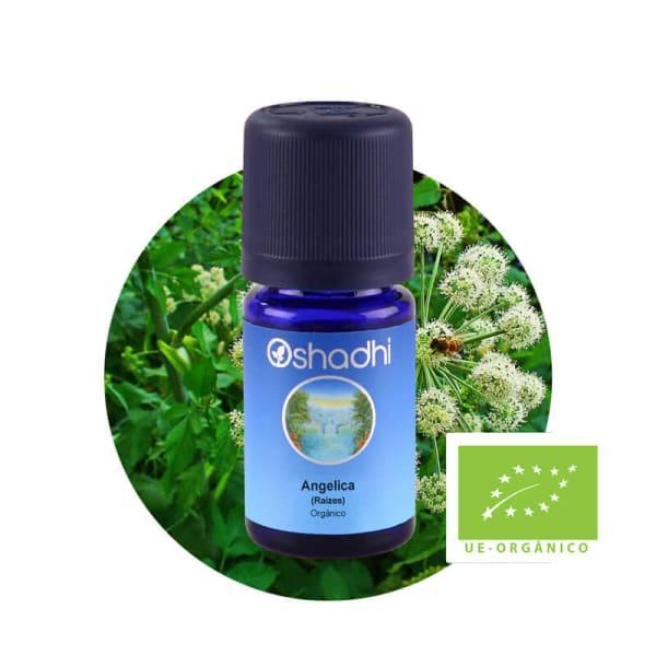 Angelica (Raízes) - Óleo Essencial Orgânico - 3ml