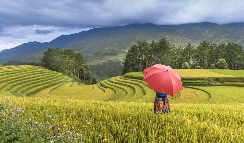 Youth Employment and Society Development (YESD): Vietnam Trekking Tour: Four Days in Ha Giang