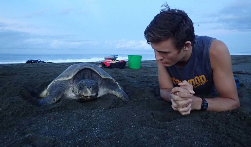 OSA TURTLES: Costa Rica Discovery Tour: Help Protect Sea Turtles