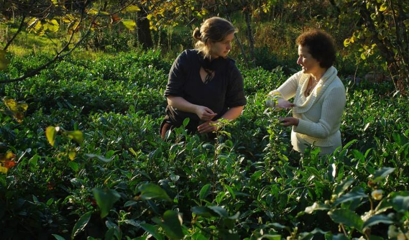 Biofarming Association Elkana: Borjomi Farm Tour: Traditional Culture & Ecofriendly Agriculture