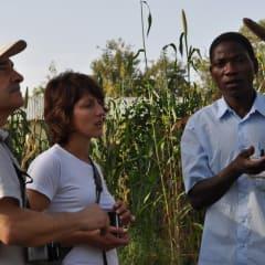 Eco Benin farm