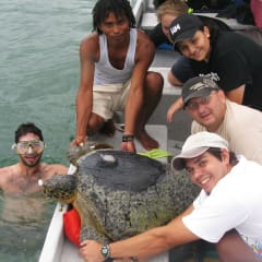 Costa Rica turtle tours