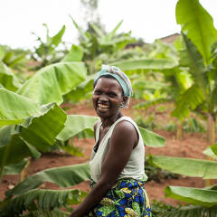 Rwanda tours - green banana leaves