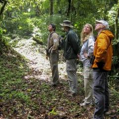 Mexico biosphere reserve