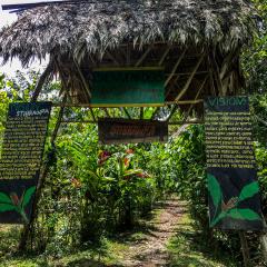 STIBRAWPA Costa Rica