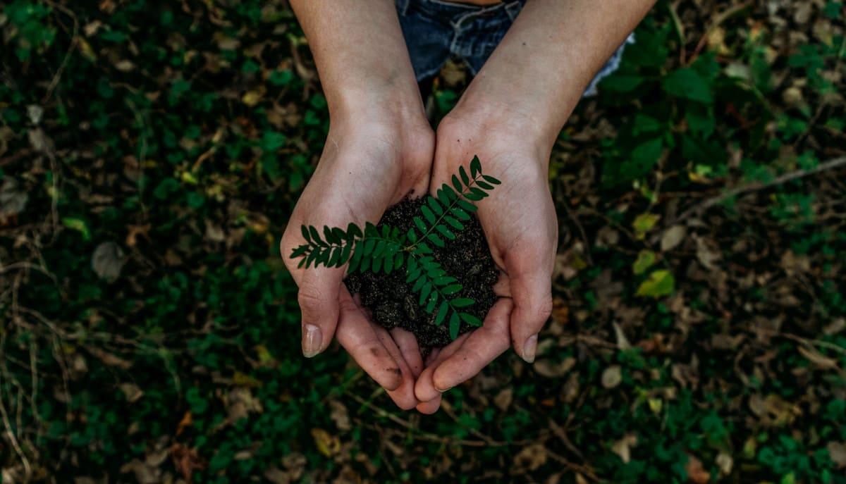 La sfida dello sviluppo sostenibile, tra pensiero globale e azione locale