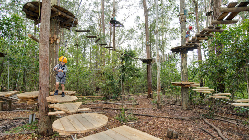 Children S Treetop Adventure Course Abbotsbury
