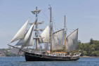 Tall Ship Cruise - For 2