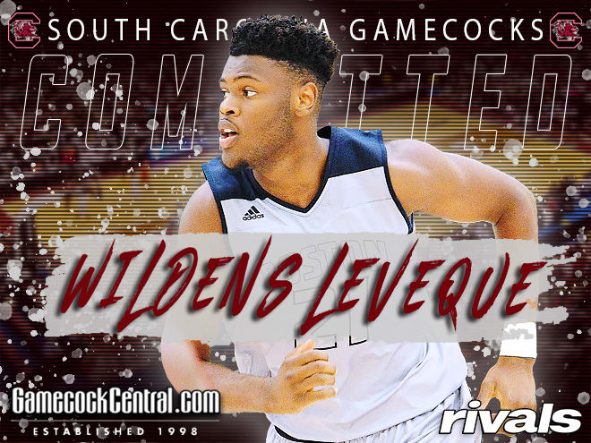 GamecockCentral - South Carolina lands paint presence Wildens Leveque