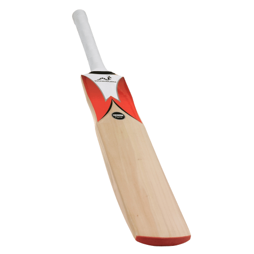 Woodworm Fireworm Flame Cricket Bat