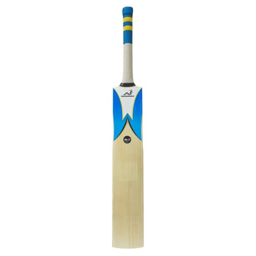 Woodworm IB Select Grade 1 Junior Cricket Bat
