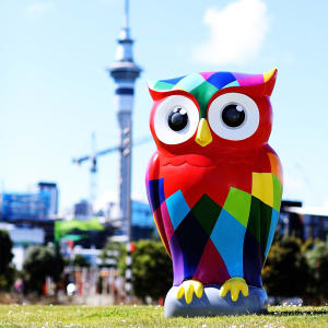 The Big Hoot | Owl Arrival Party