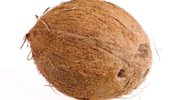 Week 31 – Baby's Size: Coconut
