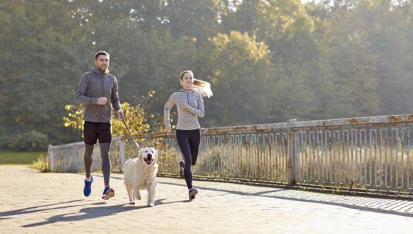 Fido's Fitness Tracker