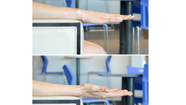 Wrist Rotate and Flex