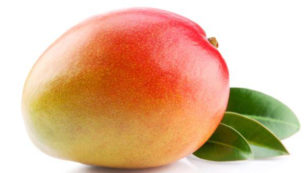 19 Weeks – Baby's Size: Mango