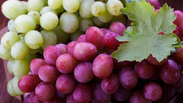 15. Grapes
