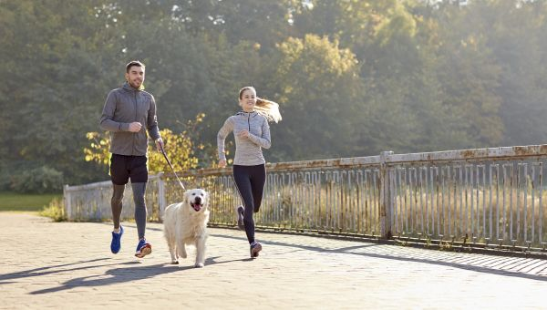 Enhance Physical Activity with Four Legs