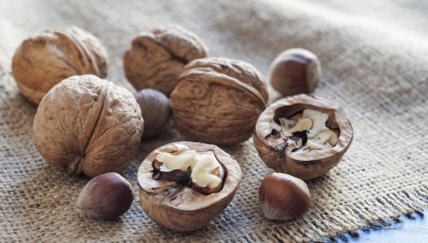 Why Walnuts Are Good for Your Wellness