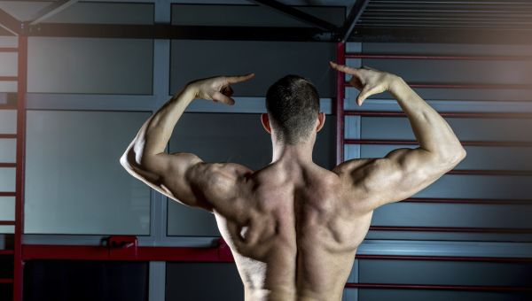 Exercises to Build a Better Back