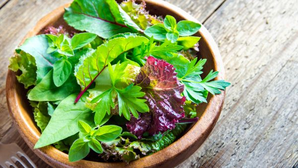 Leafy Greens - Fuel for Good Gut Bacteria