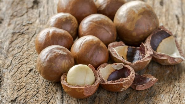 A Tropical Alternative to Almonds