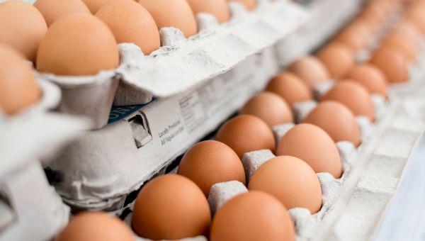 News: Salmonella Outbreak Prompts Recall of 200 Million Eggs