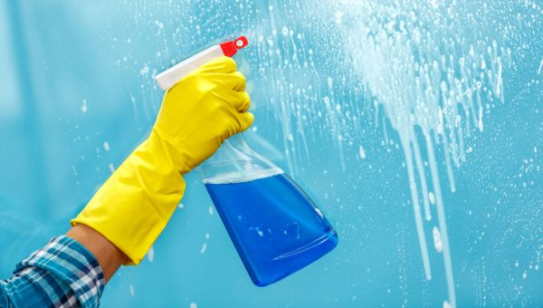 The Connection Between Household Cleaners and Gut Bacteria
