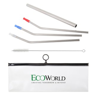 6-Pc Stainless Steel Straw Set