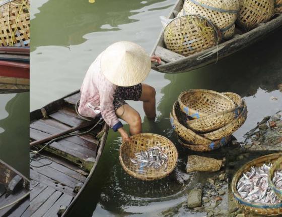 Celia Pearson's Layerings: A Glimpse of Southeast Asia