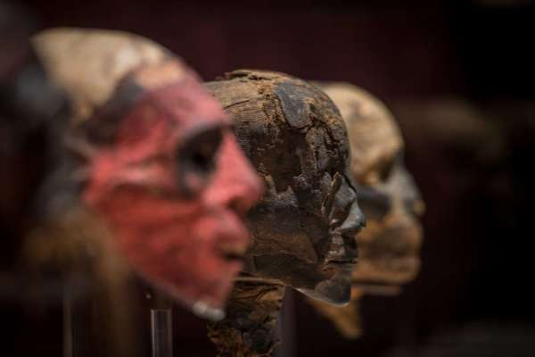 Houston Museum Of Natural Science Mummies