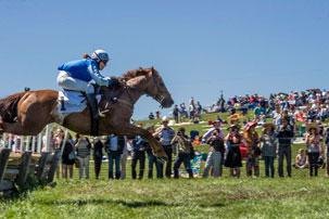 Point to Point