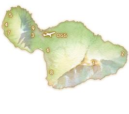 Map showing driving times on Maui