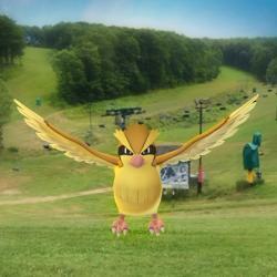 Pokémon at Seven Springs