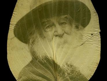 War Memoranda: Photography, Walt Whitman, and Renewal by Binh Danh and Robert Schultz