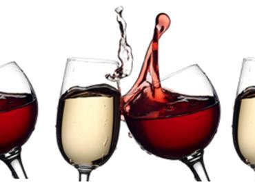 Wine Class 101 at Via Girasole Wine Bar