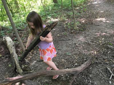 Blendon Woods Natural Play Area
