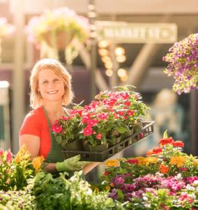 Market Flowers