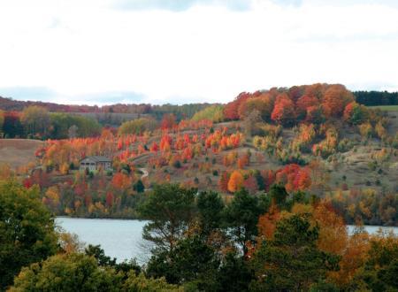 A hillside along Lake Leelanau on County Road 641